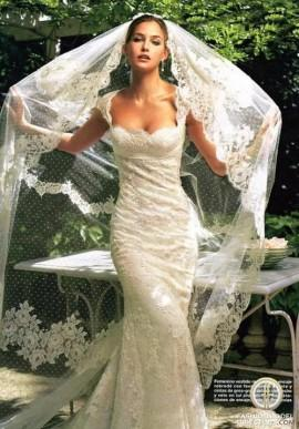 wedding photo - Lace Wedding Dress and Mantilla Veil