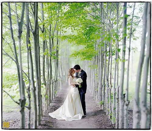 Wedding - Along The Path