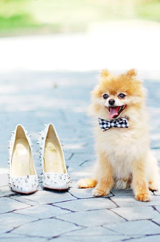 Mariage - Sooooo Cute!