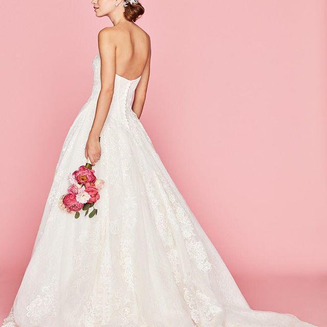 Nozze - David's Bridal