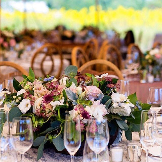 Wedding - Plum Tones