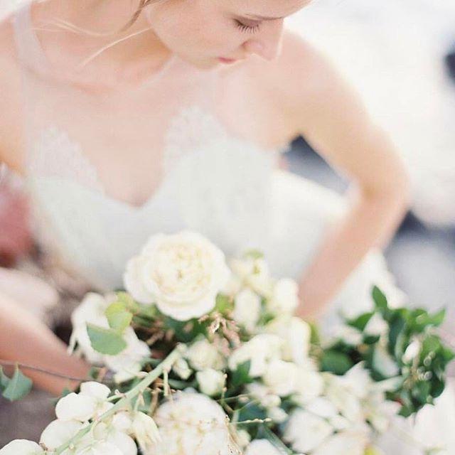 Düğün - Wedding Sparrow