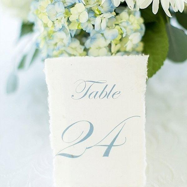 Hochzeit - Tidewater and Tulle