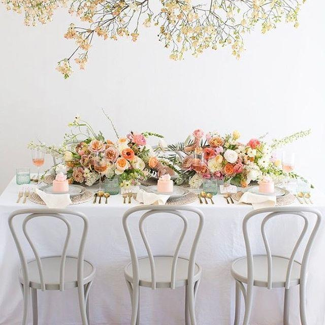 زفاف - 100 Layer Cake