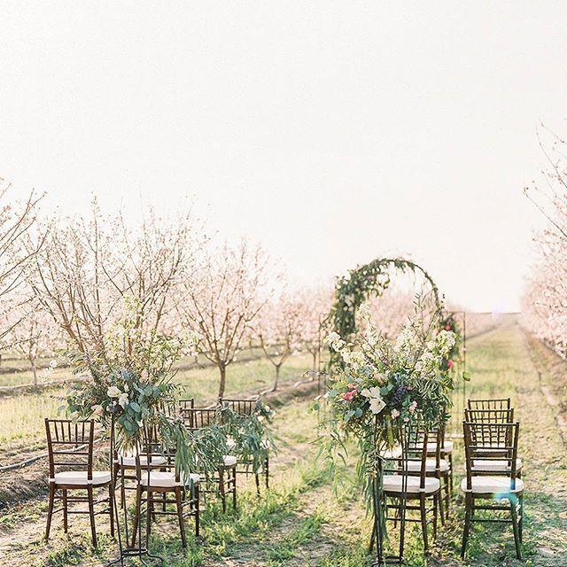 Mariage - Ruffled ✨ Weddings + Inspo