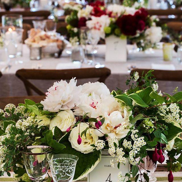 Hochzeit - Lyndsey Hamilton Events