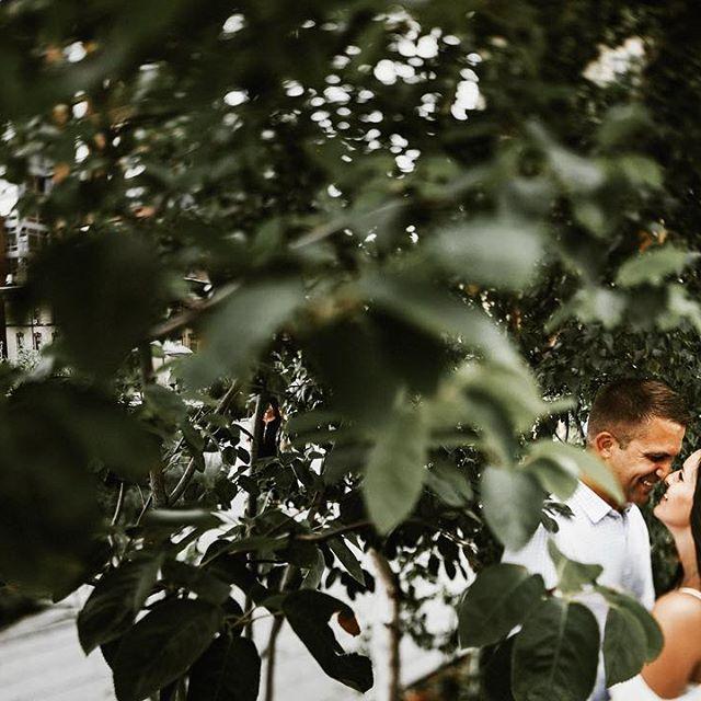 Hochzeit - Jay Cassario