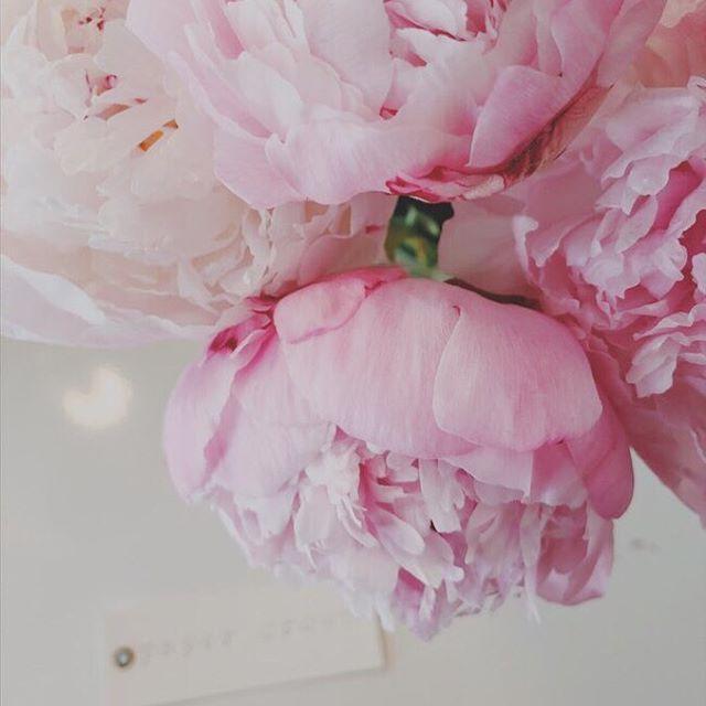 Wedding - Paper Crown