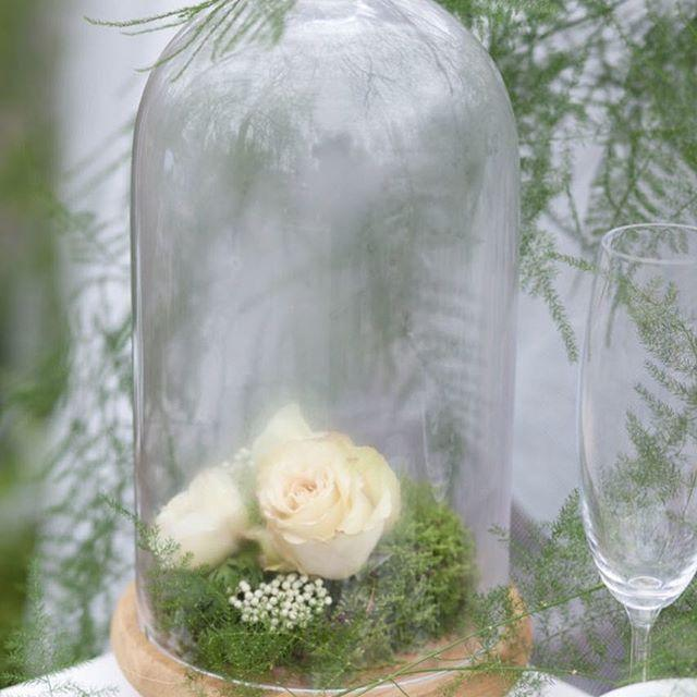 Hochzeit - Want That Wedding