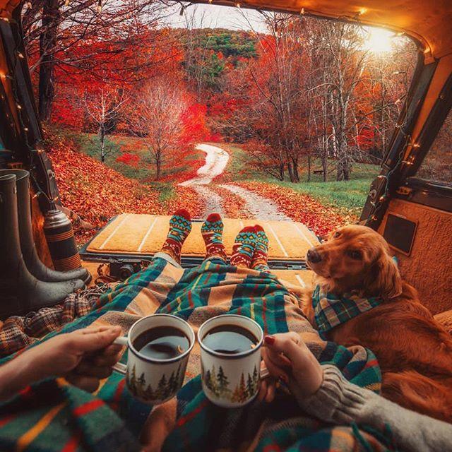 Свадьба - Best Places To Go