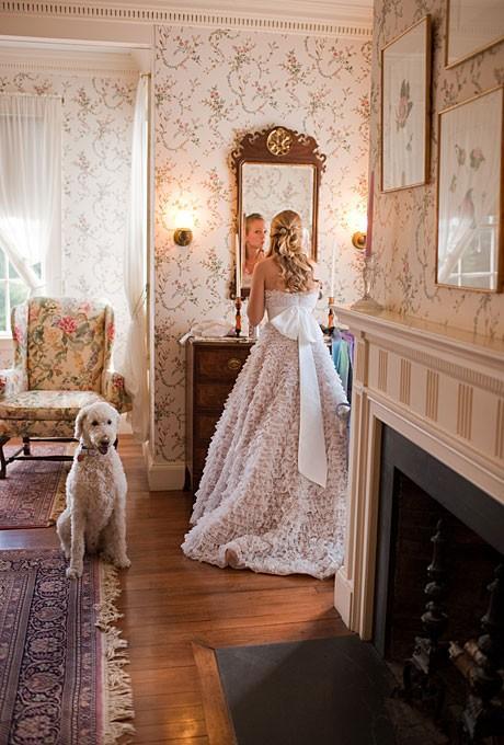 Свадьба - С домашних животных