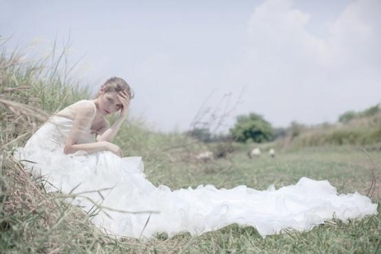 Wedding - Wedding Photography Services