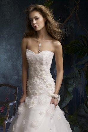زفاف - تارا كيلي