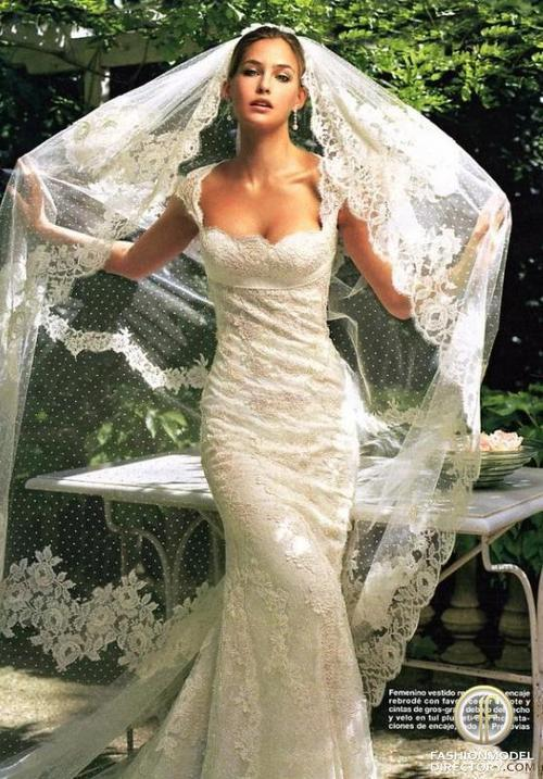 Lace Wedding Dress And Veil : Mantilla veil lace wedding dress and