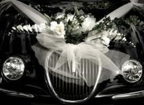 wedding photo - Свадебные автомобили