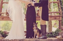 wedding photo - Pets In Wedding