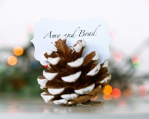 wedding photo - CUSTOM ORDER -- for Sujin -- 75 Snow Dusted Pine Cone Place Cards and Gold Deer Wedding Cake Toppers - New