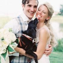 wedding photo - Katie Stoops