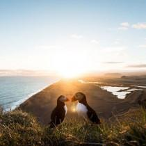 wedding photo - BEAUTIFUL DESTINATIONS