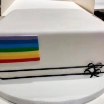 wedding photo - Sugarplum Cake Shop