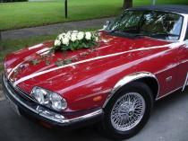 wedding photo - Wedding Car