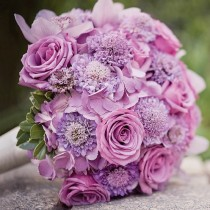 wedding photo - Лаванда Подробнее Свадебные